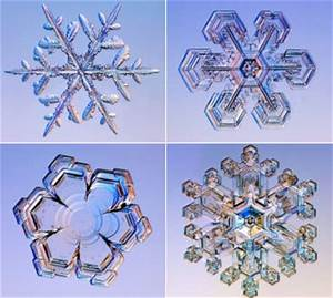 Ms.Reynolds Classroom Canvas: Snowflake Symmetry