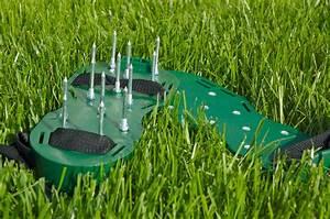 Rasen Lüften Geräte Zur Rasenbelüftung : rasen l ften vorteile vorgehen beim rasenl ften plantura ~ Lizthompson.info Haus und Dekorationen