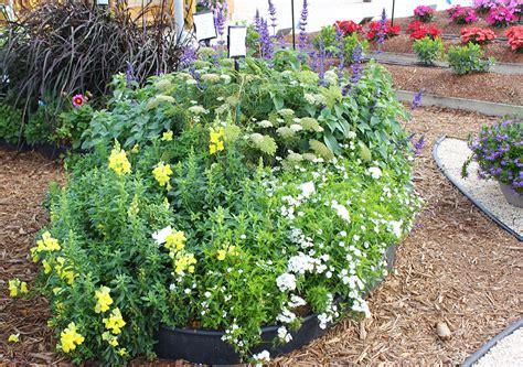 cut flower garden design small space cut flower garden ideas costa farms