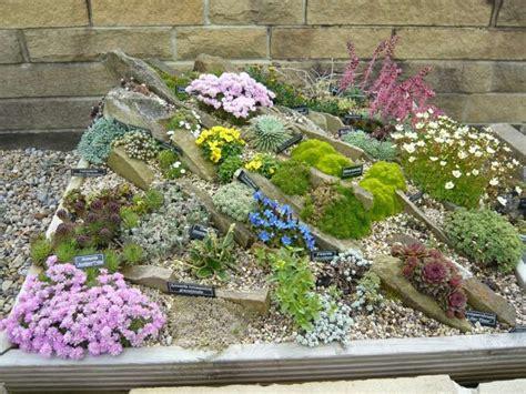 Sukkulenten Garten Anlegen by Steingarten Anlegen Aus Schmalen Steinplatten Moos Und