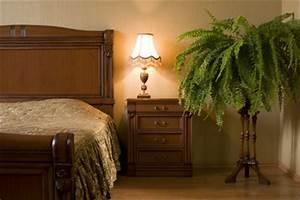 Zimmerpflanzen Für Dunkle Ecken : zimmerpflanzen f r die nordseite ~ Michelbontemps.com Haus und Dekorationen