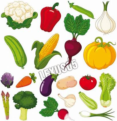 Vegetables Fresh Clipart Vector 500px Graphic