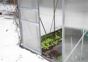 Gewächshaus Im Winter : wintersalat anbauen sorten aussaat zeitpunkt ~ Lizthompson.info Haus und Dekorationen