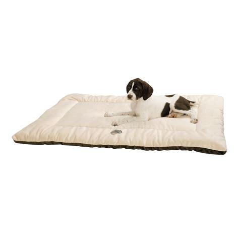 ollydog plush dog bed 22x36 quot large 97267 save 54