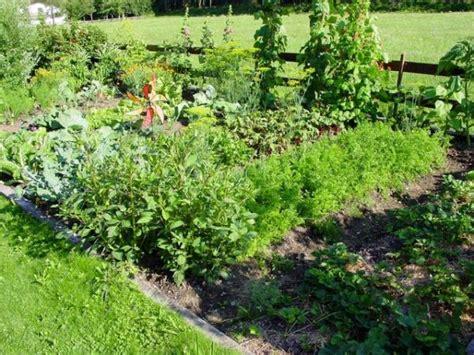 Ein Vielseitiger Helfer Für Den Garten