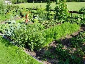 Einfaches Gemüse Für Den Garten : kalkstickstoff ein vielseitiger helfer f r den garten ~ Lizthompson.info Haus und Dekorationen