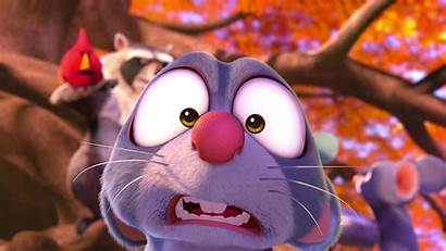 Nut Job Squirrel Comedy Animation Wallpapers Nutty