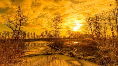 wallpaper pemandangan emas hd gratid