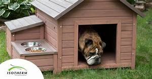 diy insulation for a dog kennel isotherm thermal With dog boarding in your home