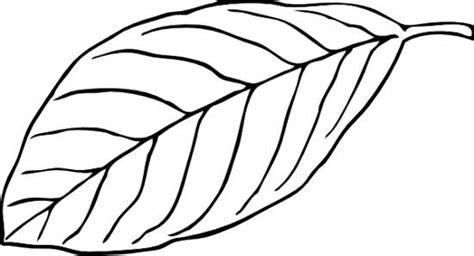 leaves black  white black  white leaf clipart
