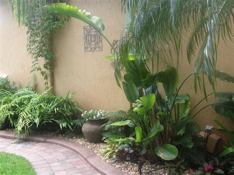 florida tropical landscaping ideas tropical florida