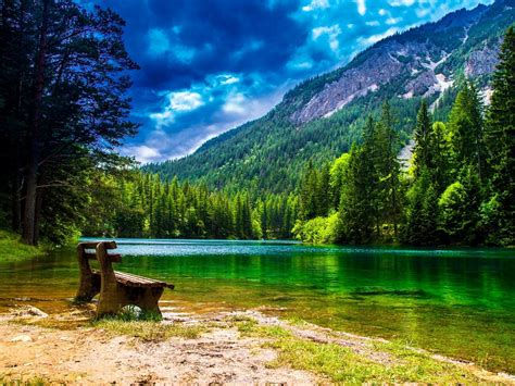 Wonderful Mountain Landscape With Green Pine Forest Green ...
