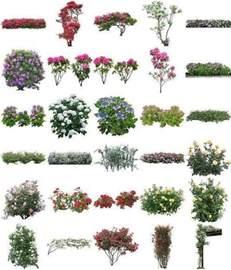 Photoshop Flower Trees