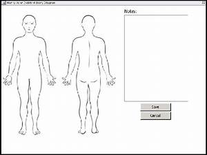 Blank Body Diagram