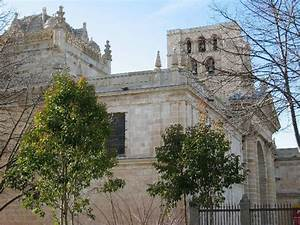 Guide to Zamora, Spain