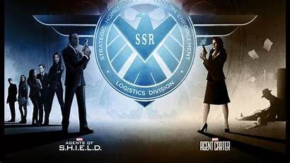 Agents Carter Shield Agent Wallpapers Iphone Pieces
