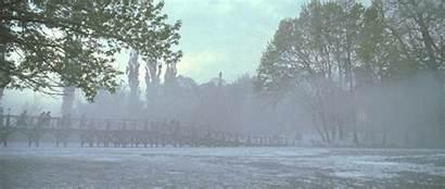 Dark Fog Vfx Rising Seeker Venturing Awn