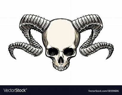 Skull Horns Vector Royalty Vectorstock Vectors