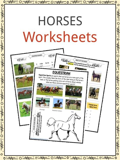horse facts  worksheets  kids kidskonnect