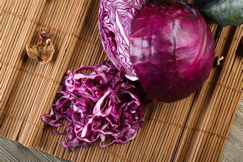 Cucinare Verza Rossa by 3 Ricette Veloci Con La Verza Rossa Guide Di Cucina