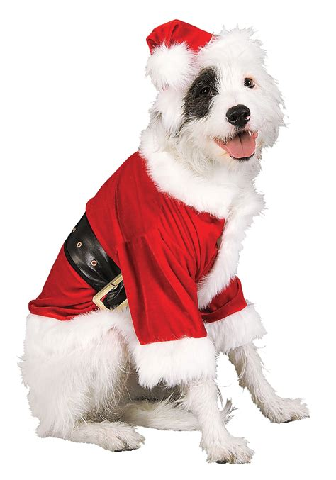 small dog christmas outfits santa pet costume