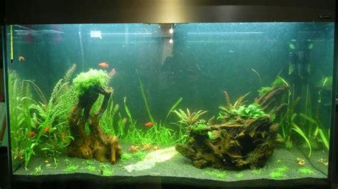 prix aquarium 200 litres 28 images aquarium 500 litres bretagne achat aquarium 200 litres