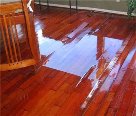 water damage restoration mold remediation sewage cleanup