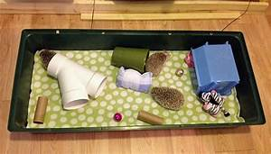 hedgehog cage setup | Hedgehog cage, Baby hedgehog, Hedgehog