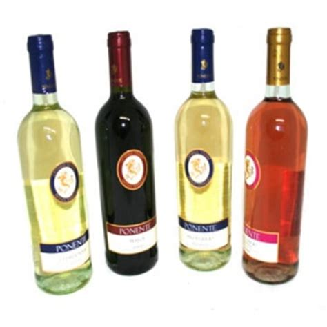 Best Italian Wines Best And Expensive Italian Wines Different Types Of