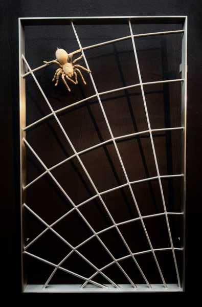 Spinnennetzgitter Aus Edelstahl Mit Einer Spinne Aus