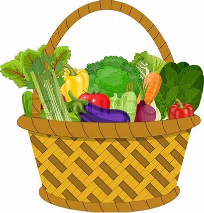 Basket Healthy Vegetables Shopping Different Supermarket Colourbox