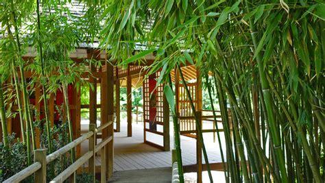 Japanischer Garten Toulouse by St 228 Dtereise Toulouse Sehensw 252 Rdigkeiten An Einem Tag