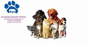 p e house and pet sitting pethealthcarecoza With dog and house sitting services