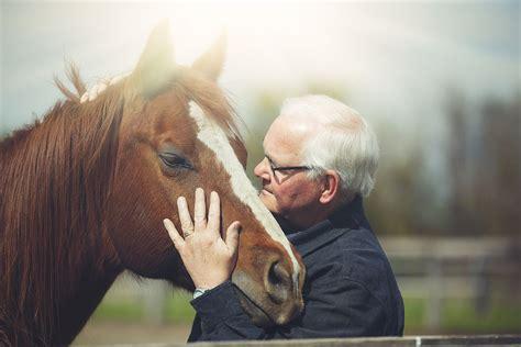 horse horses age lifespan human bit little getty older facts lives head leben many nelson rebecca moment