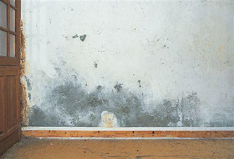 condensation sur mur interieur sur murs int 233 rieurs dip etanch
