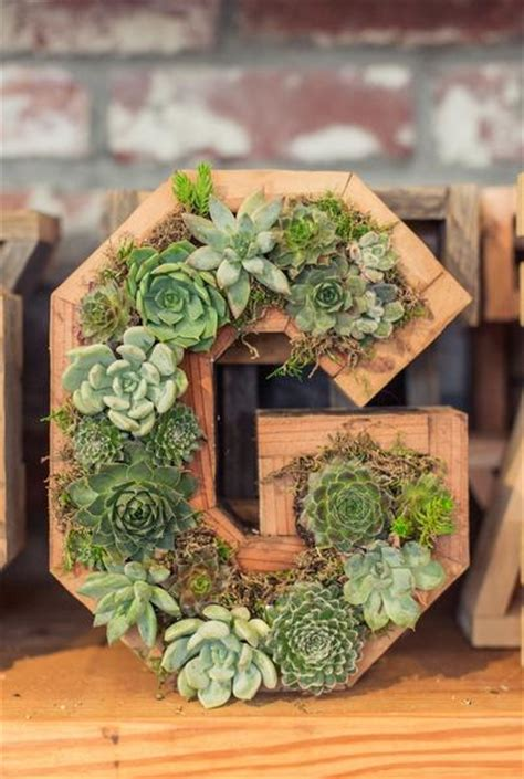 succulent letter succulent letters numbers and hearts dig gardens