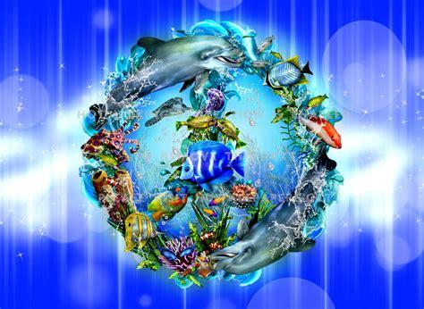 Beautiful Sea Animals Wallpapers - beautiful sea animals wallpapers