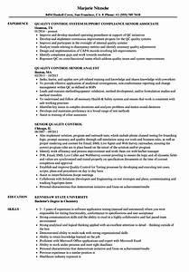 Resume Sample For Application Senior Quality Control Resume Samples Velvet Jobs