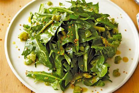 Çikore, Limon, Hudhra të Njoma - Shëndet nga Natyra - AgroWeb