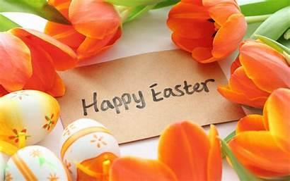Easter Happy Bunny Coming Desktop Background Backgrounds