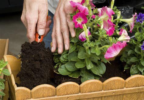 Pflanzgefäße Für Den Außenbereich  Tipps Von Obi