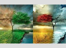 Do Seasons Represent Spiritual Change? Barbara DeLong