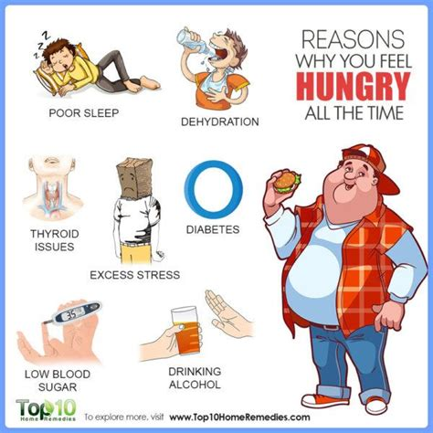 reasons   feel hungry   time top  home
