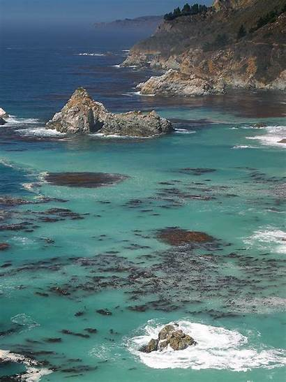 Sur California Travel Abalone Marina Poaching Convicted