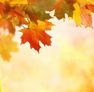 Fall Heating and Plumbing Checklist – Routine Maintenance ...