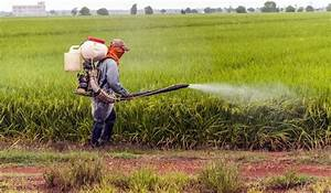 Top Pesticide Using Countries - WorldAtlas.com