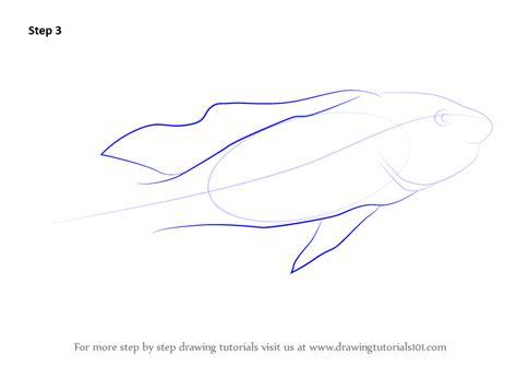 learn   draw  lake magadi tilapia fishes step