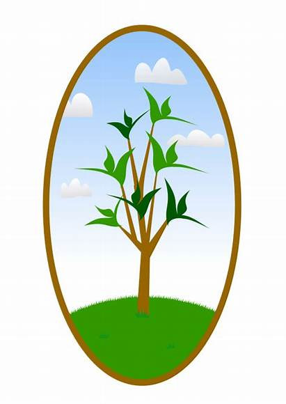 Clipart Landscaping Vector Landscape Tree Oval Clip