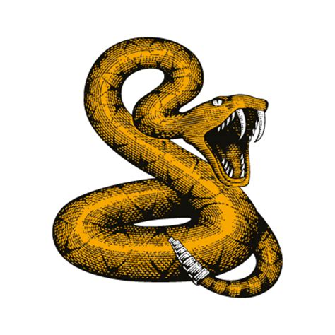 snake vector logo snake logo vector