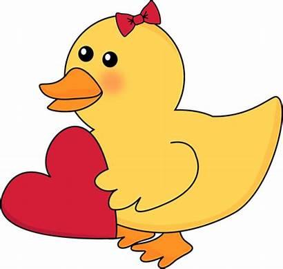 Duck Clipart Valentine Valentines Clip Yellow Ducks
